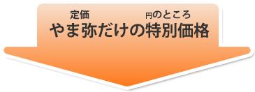 ディバーシー(ジョンソン) 光沢王 18L ☆業務用ワックス☆送料無料☆空港用ワックス